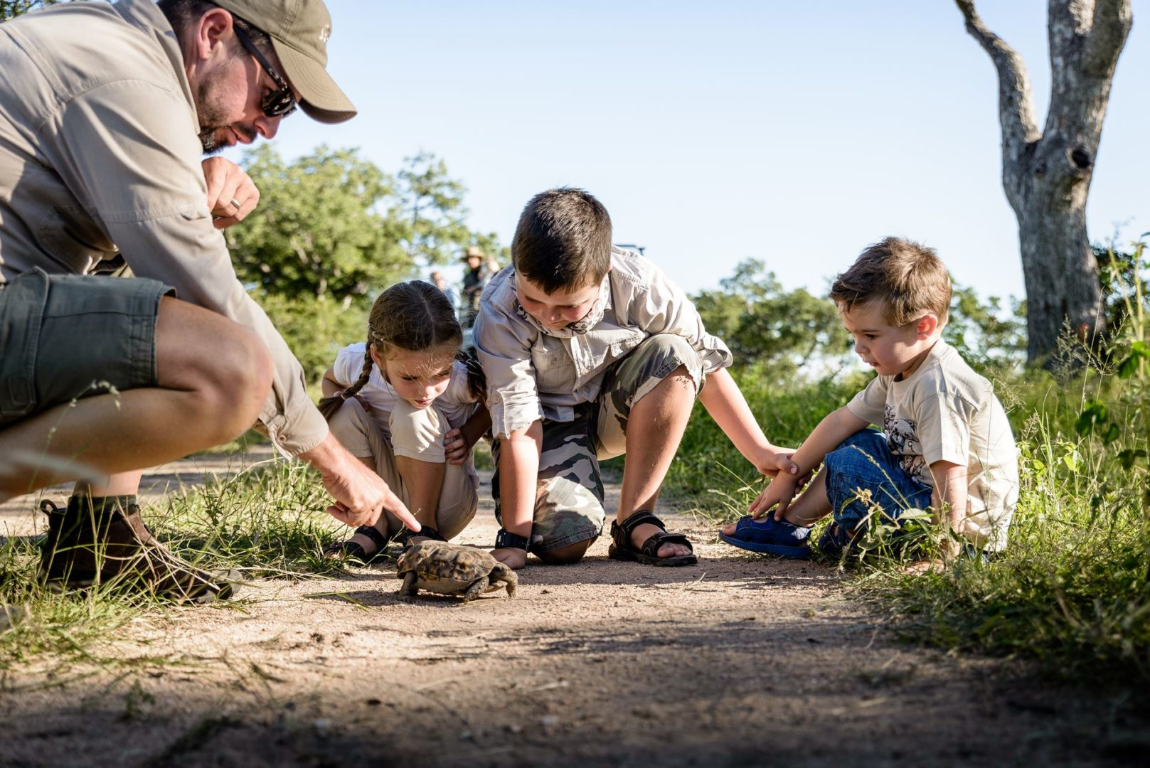 best African family safari for children involves the big and the small, like this tortoise
