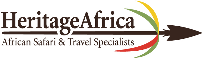 Best Luxury African Safaris For You   Insider's Guide & Reviews
