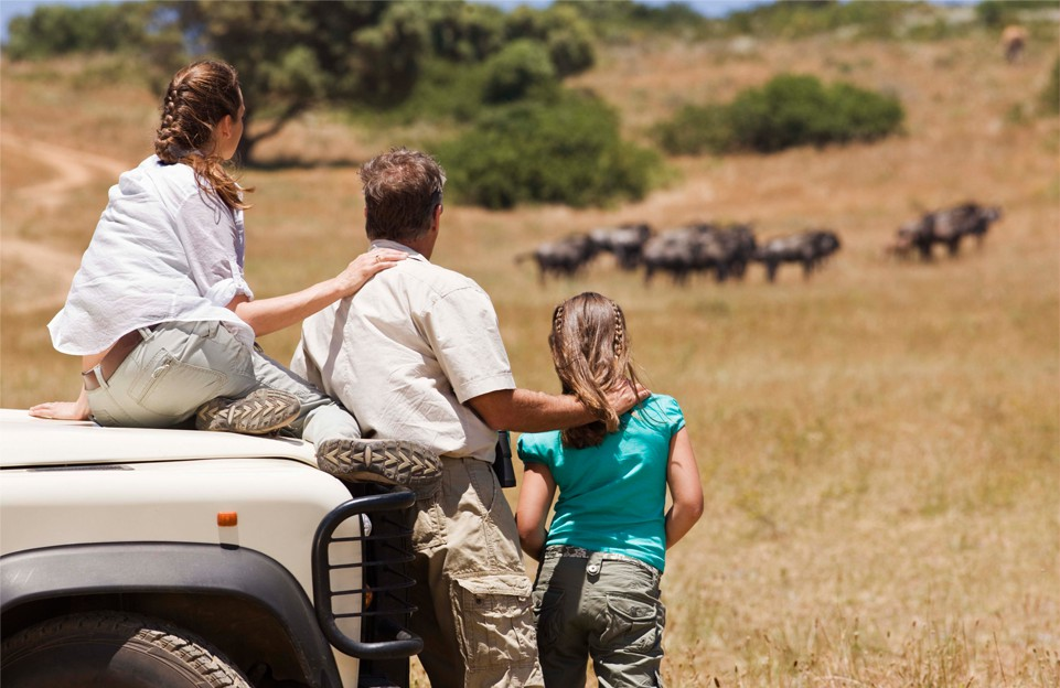 the best African family safaris give you space together as a family