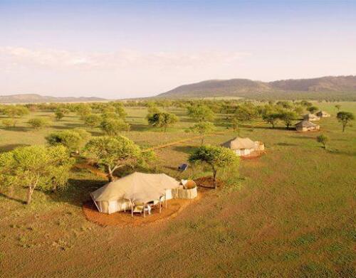 One-Nature-Serengeti-5-511x400