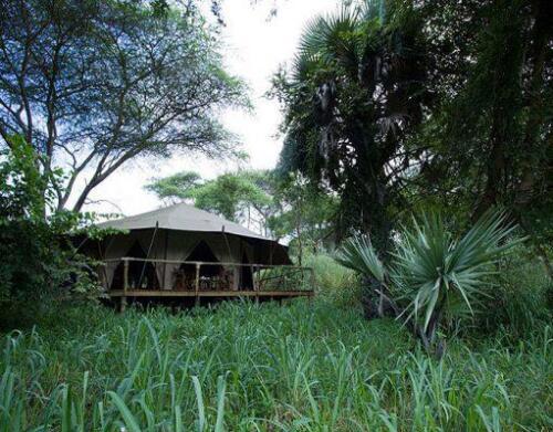 Palahala Camp 1-511x400