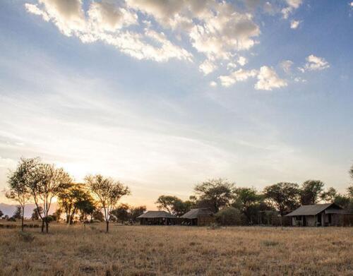 tarangire-safaris
