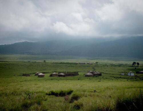 ngorongoro-highlands