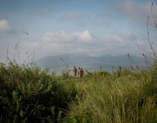 ngorongoro-highlands4